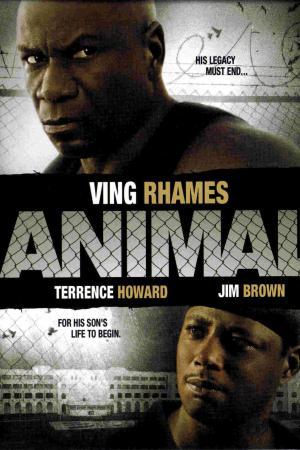 Animal - Il Criminale | The Film Club