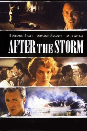 After The Storm   The Film Club