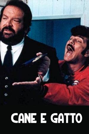 Cane e Gatto   The Film Club Bud Spencer, Tomas Milian, Marc Lawrence Bruno Corbucci Italia