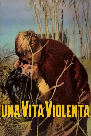 Una Vita Violenta   The Film Club Italia Franco Citti Pier Paolo Pasolini