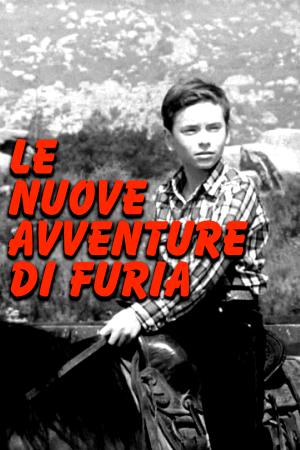 Le nuove avventure di Furia | The Film Club