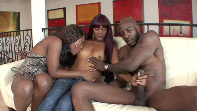 Special Cheated Anal Threesome Party With Blacks Pussy